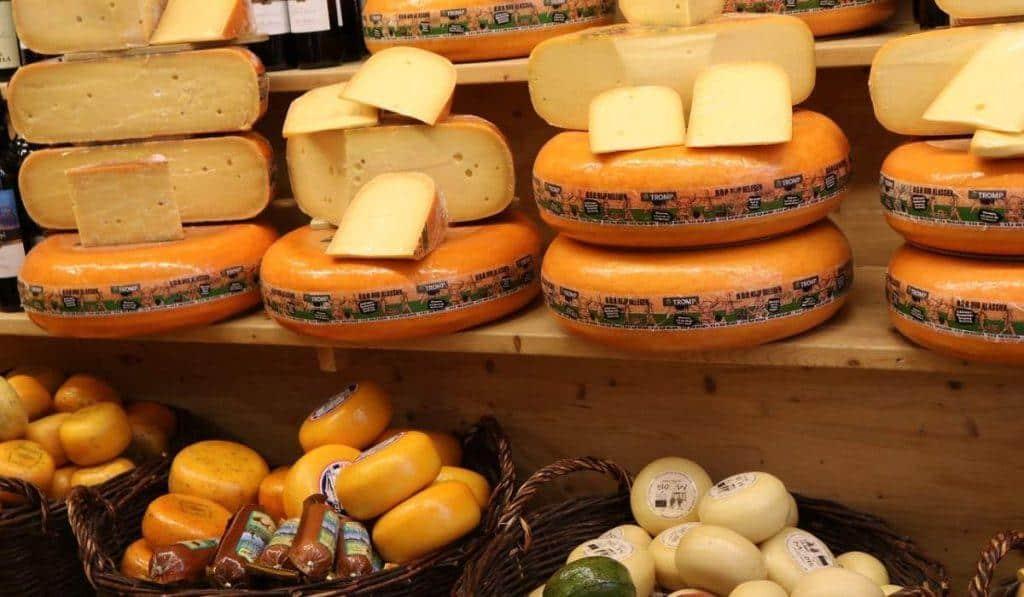 dutch cheese museum alkmaar