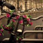 romantic trip to Amsterdam