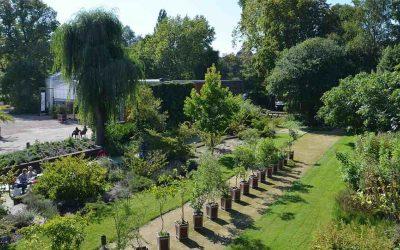 TU Botanical Gardens